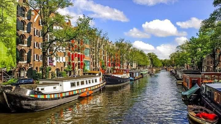 Hollanda'da maske zorunluluğu kalktı